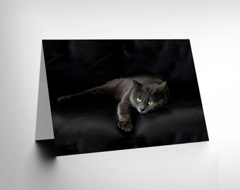 Black Cat Yellow Eyes Lazy Sleepy Birthday Blank Greetings Card CL1028