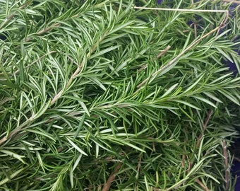 Dried Rosemary Sprigs