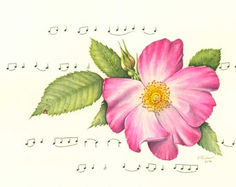 Wild Rose, rose watercolor, flower watercolor, rose print, rose painting, Giclee print from original watercolor painting