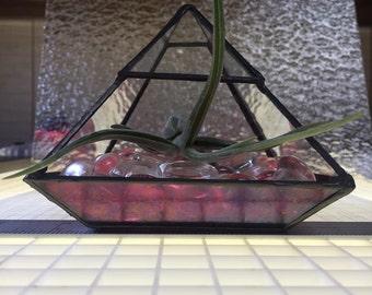 Stained Glass Air Plant Terrarium