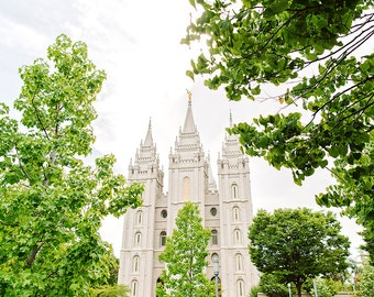 Salt Lake City Utah Temple Trees