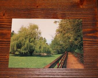 Lake Fenwick Park - 10x7 Metal Print
