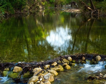 Nature Photography Bull Creek in Austin, TX Photo Print