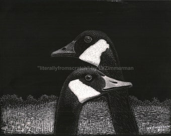 Bird Canadian Geese ORIGINAL Scratchboard Art Original photo by Maria Elena Black, Bigfork, MT
