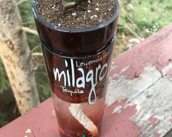 Milagro Glass Planter!