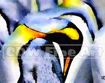 King Penguins Print of Water Colour Painting (A4)