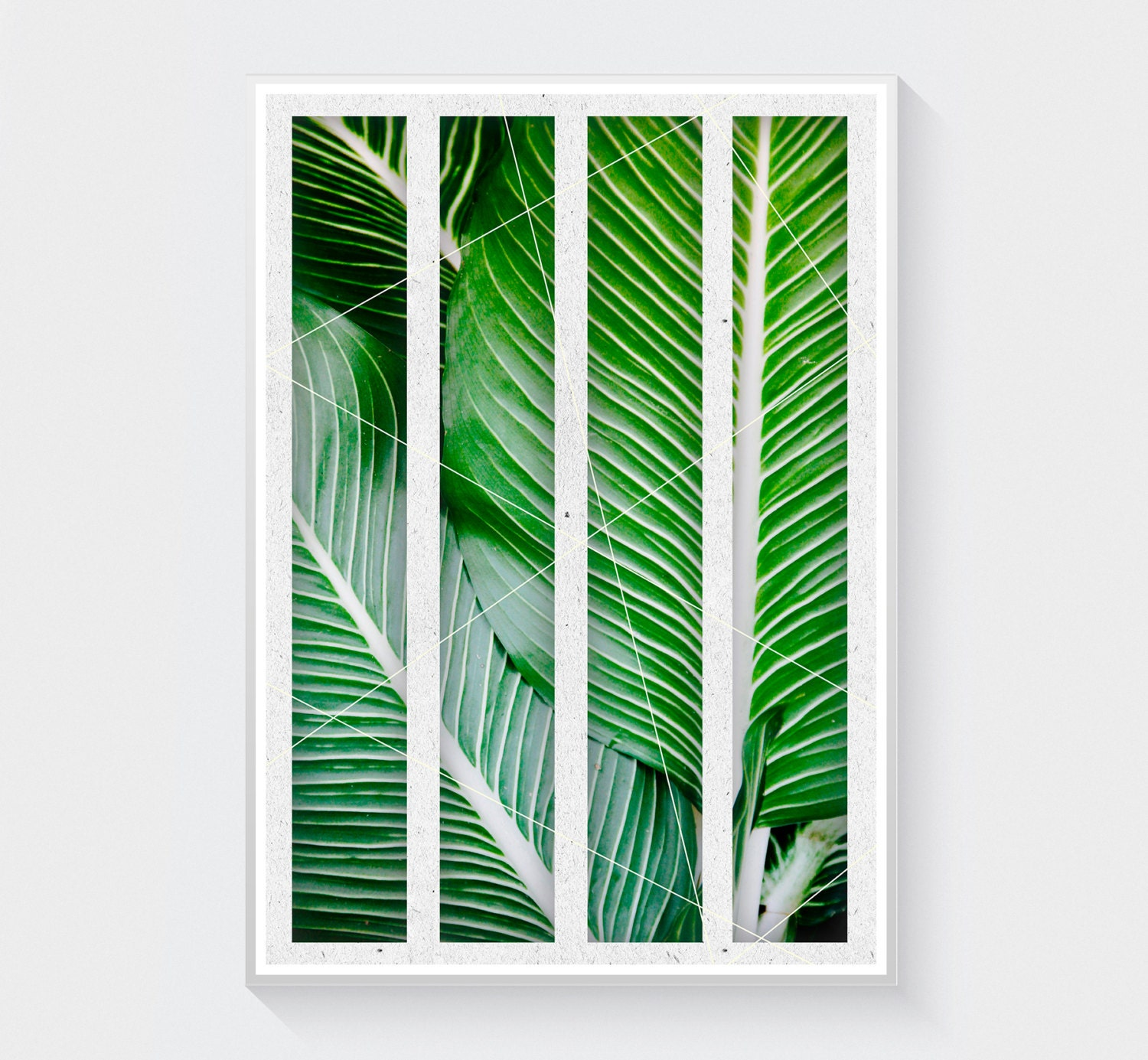 10x15cm in inches with Tropical Leaves Print Green Wall Art on Postcard Set also Rosetta Frame 4x6 moreover 526991593874589993 moreover Travel Mini Album End Of Year Gifts For in addition 261097564042.