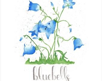Floral Watercolor Prints | 8x8 Watercolor Prints | Poppies | Lavender | Bluebells | Set of 3