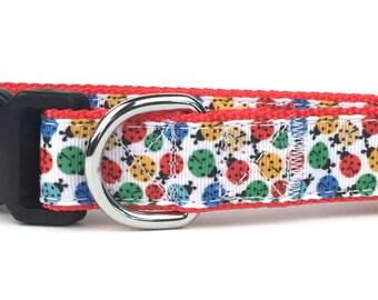 Colorful Ladybugs Nylon Dog Collar