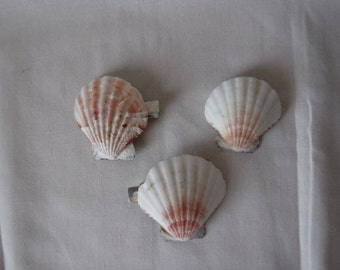 Seashell Hair Clips