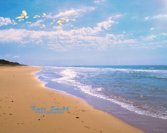 Beautiful Beach Print with Flying Birds, Instant Download Image Print