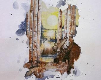 Bull Moose at Sunset