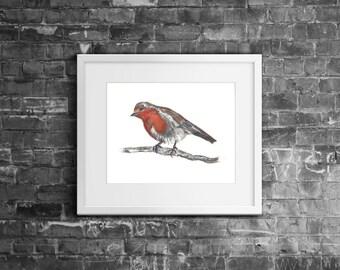 """8x10"""" 'Robin' Bird Watercolour Fine Art Giclée Nature Print"""