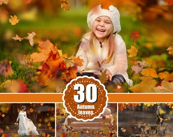 30 Autumn leaves Photo Overlays, falling autumn tree leaves effect, Photoshop Overlays, Autumn background png file