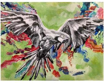 Parrot (11 x 14 print)