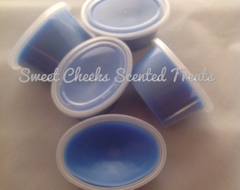 Blueberry Cheesecake - Scented Wax Treats- Scent Shot - Home Fragrance