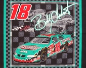 Out of Print Bobby Labonte #18 Nascar Pillow Panel