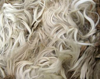 Alpaca Seconds - Suri Alpaca Fleece from an alpaca named Grease - Raw, unwashed Fawn Fleece - 2 pounds