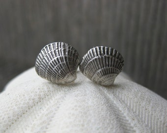 Seahell tiny FAN SHELL clam shell studs sterling silver seashell post earrings