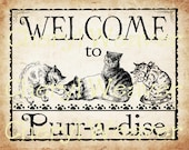Welcome to Purr-a-dise