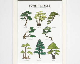 Bonsai Styles illustrated print - bonsai print - bonsai wall art - plant illustration - plant wall art - bonsai gift / home decor gift