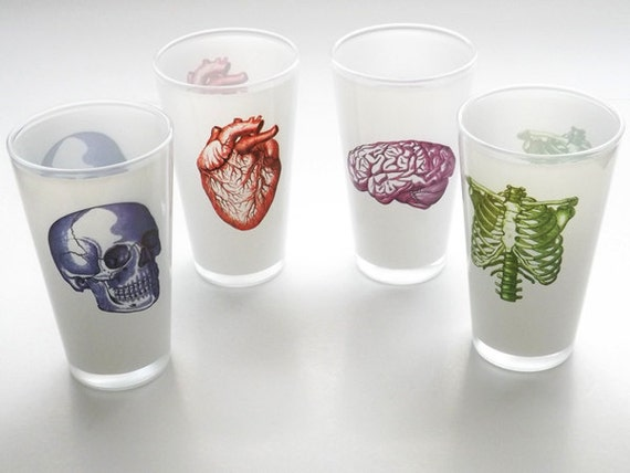Beer Pint Glasses novelty gift Father's Day medical anatomy hospital anatomical heart skull halloween creepy skeleton decor goth neurology