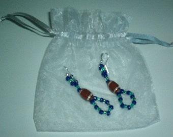 Seattle Seahawks Earrings with Little Organza Bag