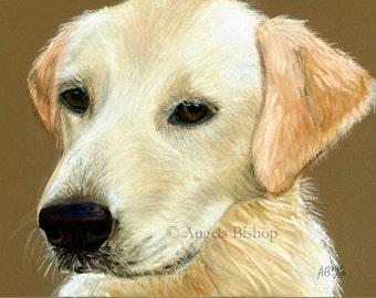 Golden Retriever Painting Print, Lucky, Painting Print, Art Print, Pet, Dog, Pastel, Reproduction, Giclee, Realism, Pet, 8 x 10