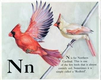 Vintage 1980's Bird Alphabet Book Child's Bookplate Illustration, Print for Framing, N for Northern Cardinal, Bird Print, Cardinal Print