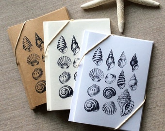 6 Seashell Card Set, seashell note cards, Greeting cards, shell note cards, thank you cards, beach card set, note cards, blank card set