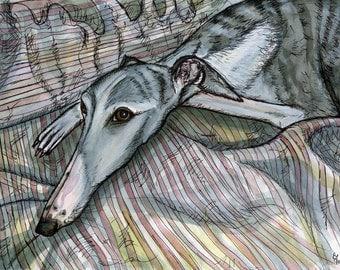 Dog Art Print - Whippet Illustration