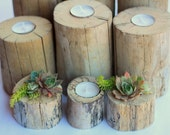 Driftwood Centerpiece Wedding Tealight Candle Holders OR Succulent Planters Large & Small