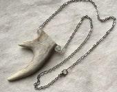 Collier de dents de bois de cerf cerf à pointe double