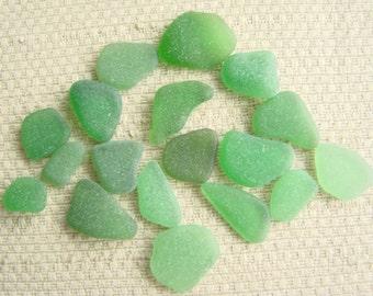 18 Charm and Earring Size Bright Green Seaglass Gems (1958) Emerald, Kelly Mediterranean Sea Glass, Beach Glass, Cute as a Button