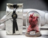 Anatomical Heart  Sculpture with Mini Glass Bell Jar Darkly Romantic Odd Gift