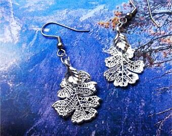 Real Oak Leaf Jewelry,  baby Oak Leaf Earrings, Silver Dipped, acy natures jewelry