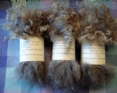 Washed Natural Colored Gray Romney Curly Wool Locks  3 oz total, divided into 3 easy to handle bundles   From our North Idaho sheep farm.