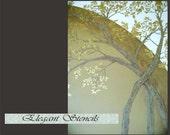 Tree Stencil/Raised Plaster Arched Trees Wall Stencil / Decorative Stencil