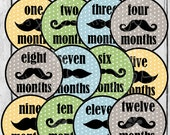 MONTHLY IRON ON Decals or Monthly Stickers - 12 Months - Mustache - Yellow, green, blue & grey - iron-ons decals for baby (Style#B13)