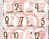 MONTHLY IRON-ONS Decals or Monthly Stickers - 12 Monthly iron on heat transfer - Baby girl - Jungle Animals - Pink (Style#A)