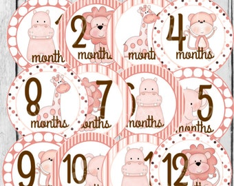 MONTHLY IRON-ONS Decals or Monthly Stickers - 12 Monthly iron on heat transfer - Baby girl - Jungle Animals - Pink (Style#A28)