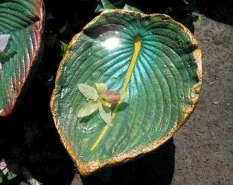 "Concrete Leaf birdbath - stands on pole in garden or pots (Leaf 6301, Hosta, 11hx8"") in garden or planters, under rain chains and more"