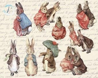 Vintage Digital Illustration. Beatrix Potter Peter Rabbit clipart.