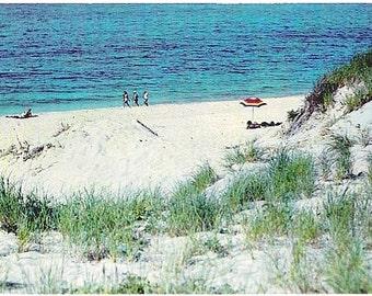 Vintage Cape Cod Postcard - Sunbathing among the Dunes (Unused)