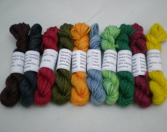 Mini Skeins - Sweet Georgia Tough Love Sock 5 g set of 10 (set 1)