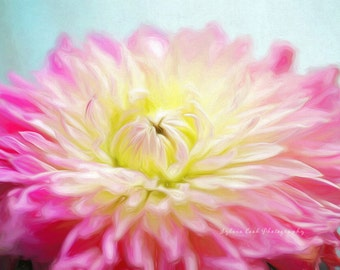 Summer dahlia, fine art print, floral photography, pink, aqua,flowers, floral,pastel,cottage decor,shabby chic,