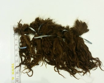 "Suri Alpaca Locks, 10"" Natural Brown Unwashed Locks,  Baby Fine Locks, Long Locks, Doll Hair, 3oz"