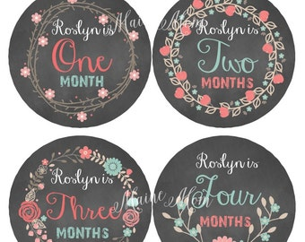 FREE GIFT, PERSONALIZED  Monthly Baby Girl Stickers, Baby Girl Month Stickers, Floral Stickers, Flowers, Milestone Stickers, Baby Shower