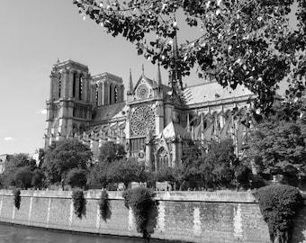 Cathédrale Notre Dame de Paris - Limited Edition Fine Art Photograph