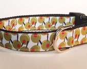 Martini Olives Dog Collar